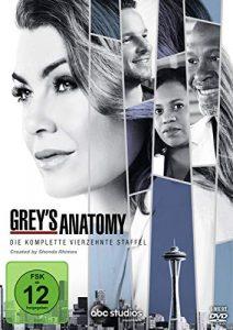 Grey's Anatomy: Die jungen Ärzte – Die komplette 14. Staffel [6 DVDs]